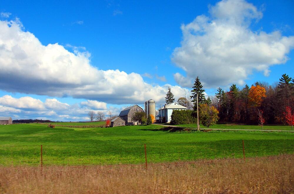 Farm by nikspix