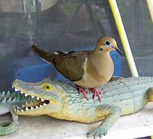 Dovey On The 'Gator by WildestArt