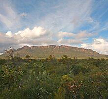 Mt Ragged, WA by Richard  Windeyer