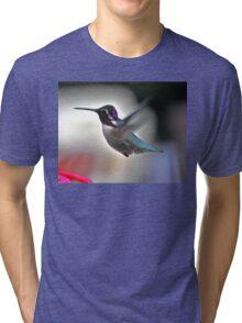 WHITE EARED MALE COSTA'S  HUMMINGBIRD Tri-blend T-Shirt
