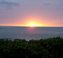sunset in oahu by michelita
