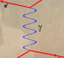 Feynman Diagram Sticker