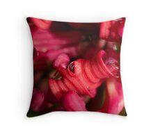 Rasberry Dew Throw Pillow