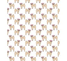 Pug dogs cute repeating pattern Photographic Print
