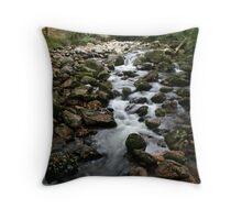 River Vapour  Throw Pillow