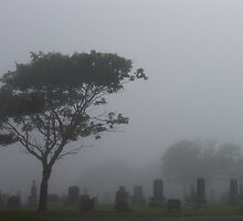 Foggy Graveyard by Martha Medford