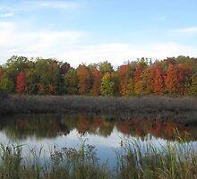 autumn reflections by emilyransom