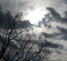 fond evening's farewell by emilyransom