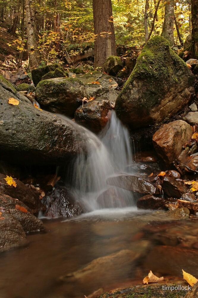 Roadside Stream in Vermont by timpollock