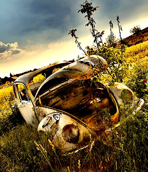 someone stole my engine and I've been stuck here for years by Dan Shalloe