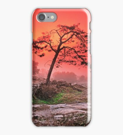 PINE IN FOG AT SUNSET iPhone Case/Skin