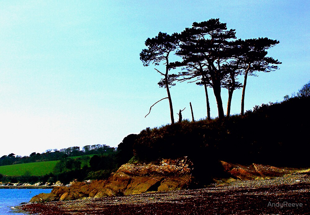 Lone Trees by AndyReeve