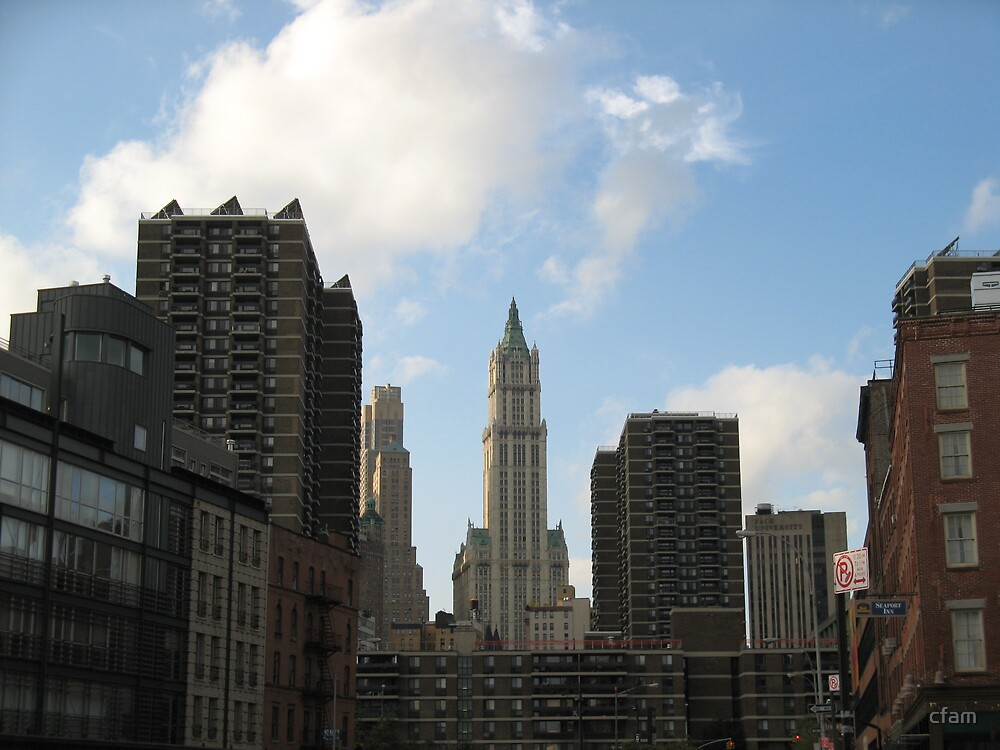 New York Skyline View from South Street Seaport by cfam