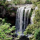 Rainbow falls, Kerikeri, New Zealand.........! by Roy  Massicks