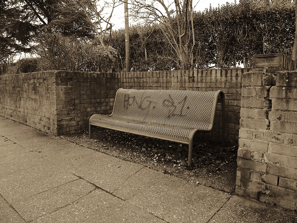 Lonely Bench by Stuart  Milton