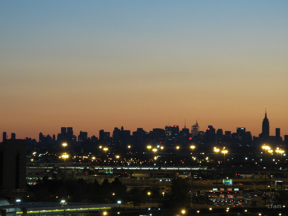 New York City Skyline at Sunrise by cfam