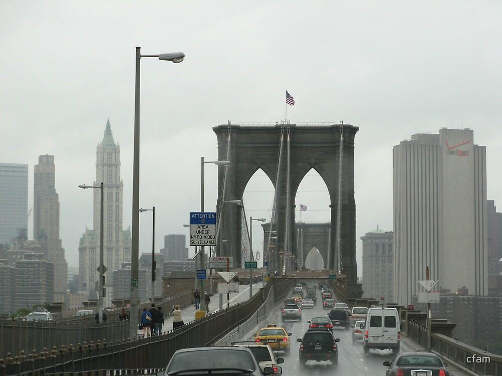 Crossing Brooklyn Bridge by cfam