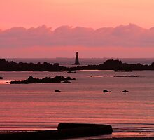 Pink Horizon by Nicholas Averre