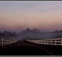 Foggy Morning Sunrise by ladywings