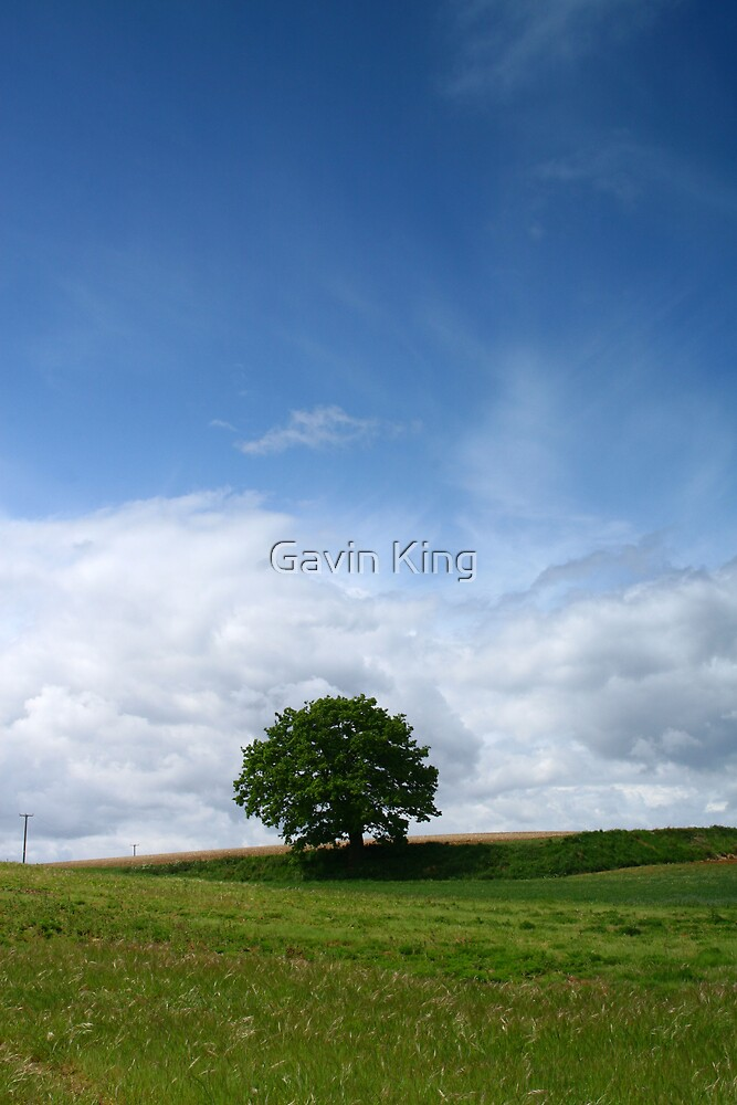 Life's here by Gavin King