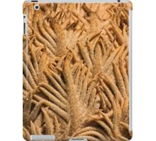 Natures abstract patterns iPad Case/Skin