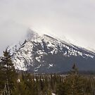 The Rocky mountains in winter by Josef Pittner