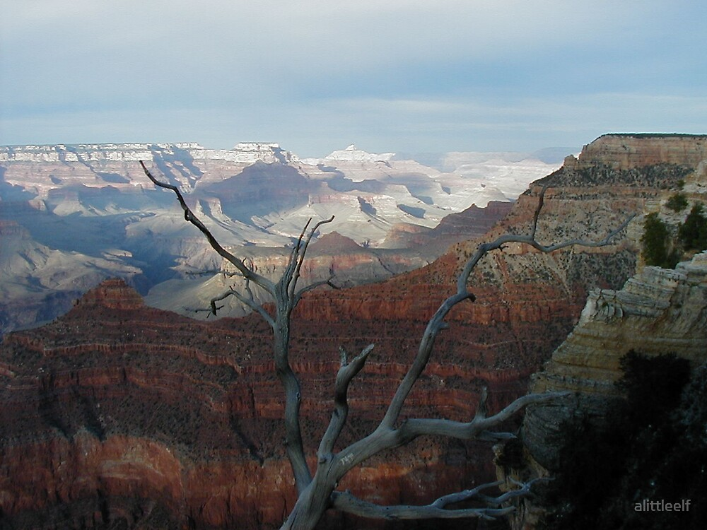 Grand Canyon by alittleelf