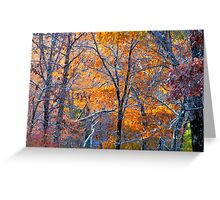 Enchanted Snow Greeting Card