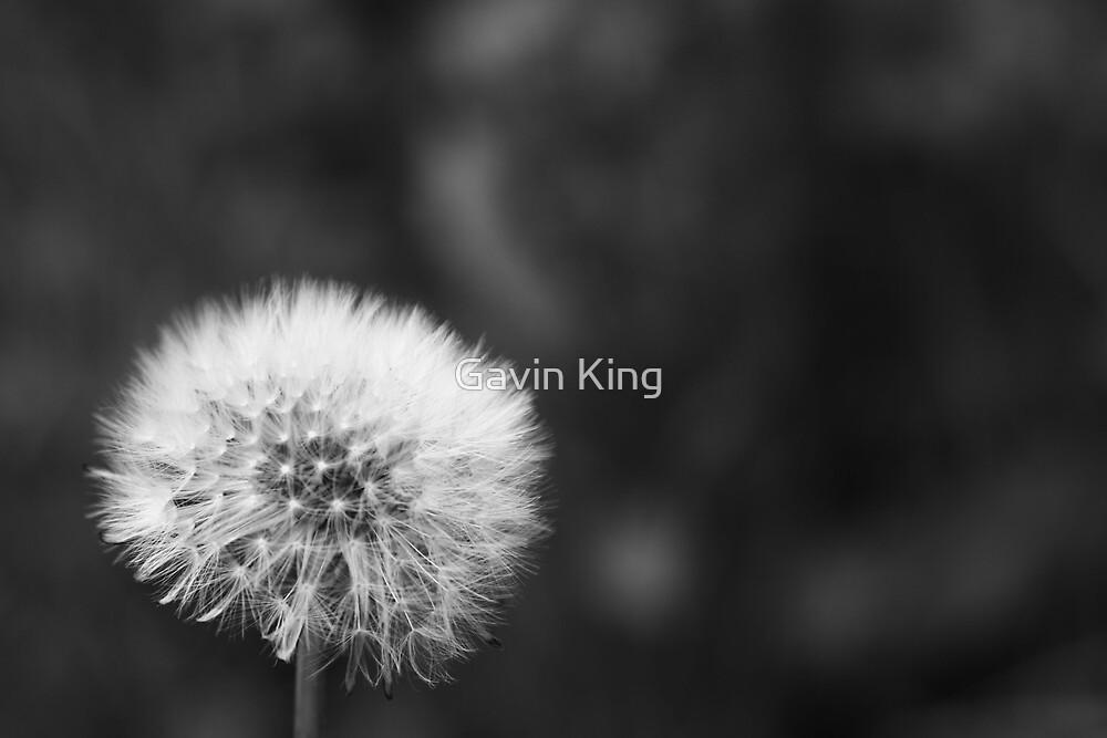 Wish by Gavin King