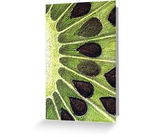 splash of kiwi Greeting Card
