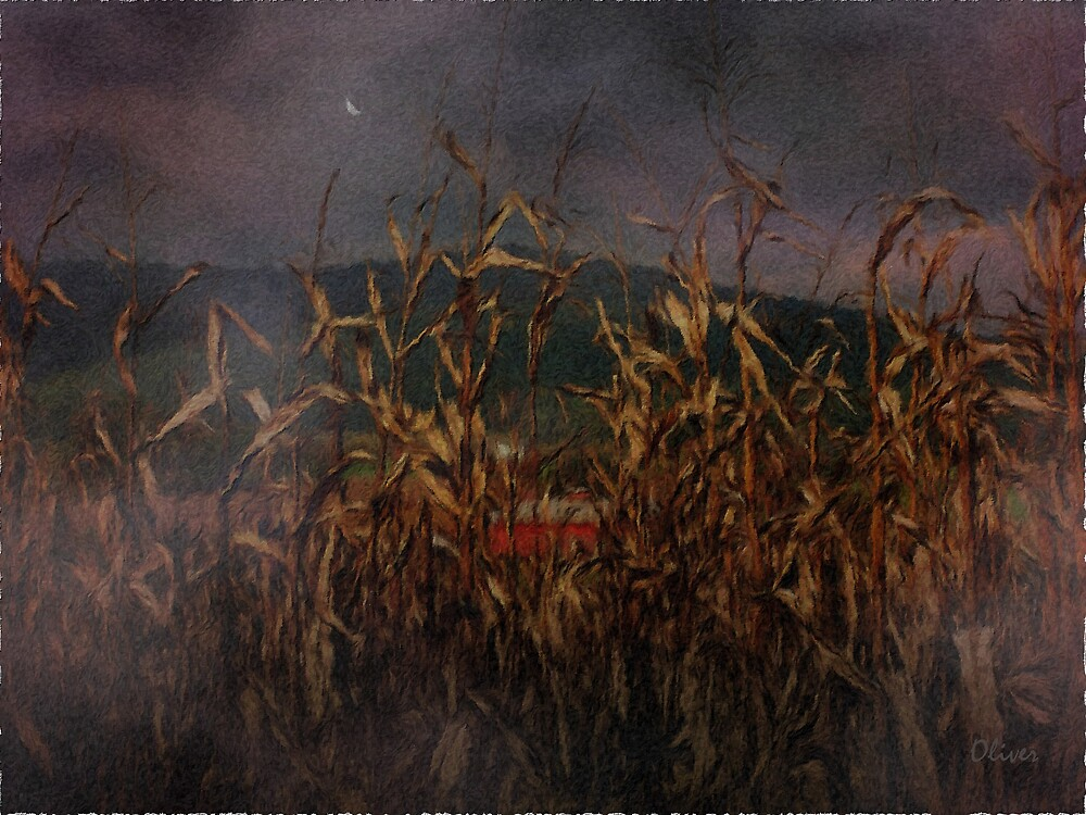 Beyond The Stalks by Charles Oliver