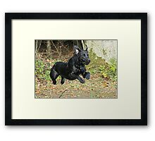 Lab Launch Framed Print