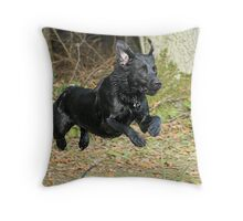 Lab Launch Throw Pillow