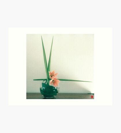 Ikebana-026 Art Print