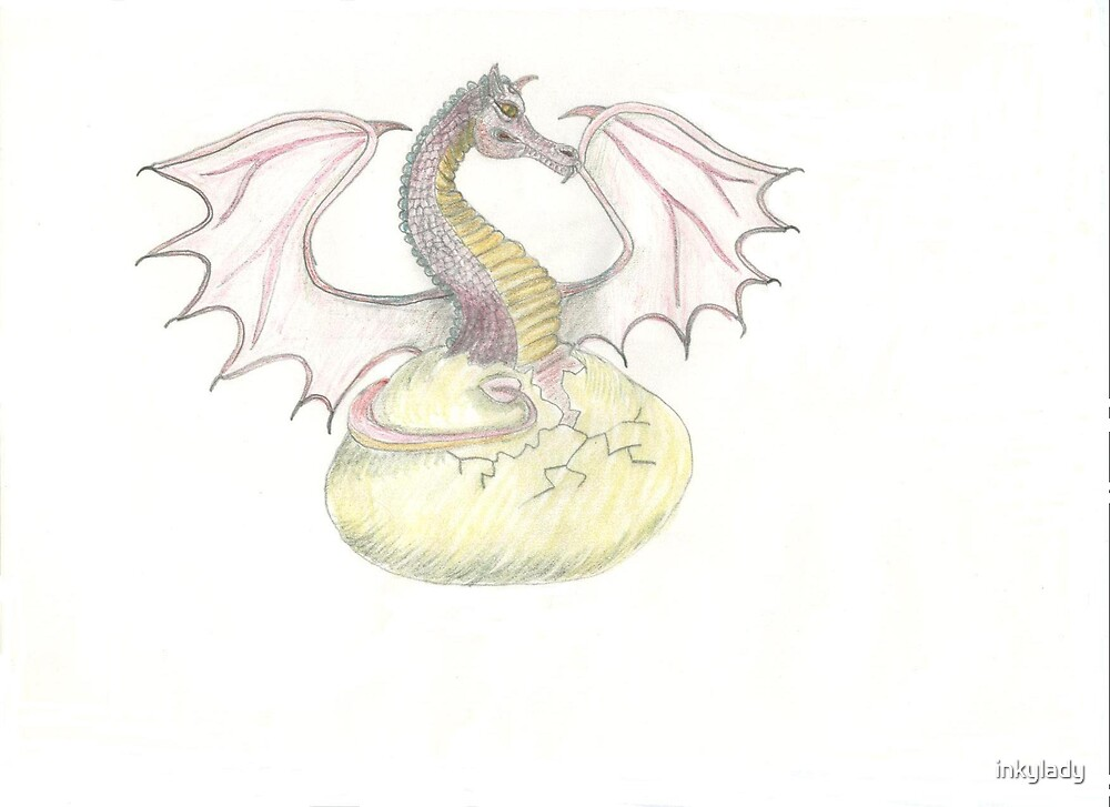 hatching dragon by inkylady