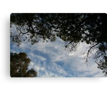 View from a Hammock Canvas Print