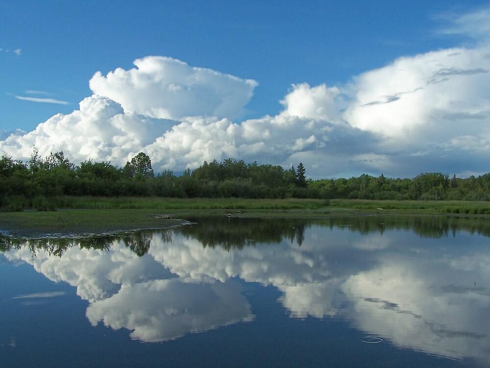 Cloudy Pond by Gene Cyr