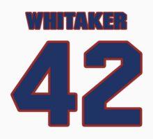 National football player Bill Whitaker jersey 42 by imsport