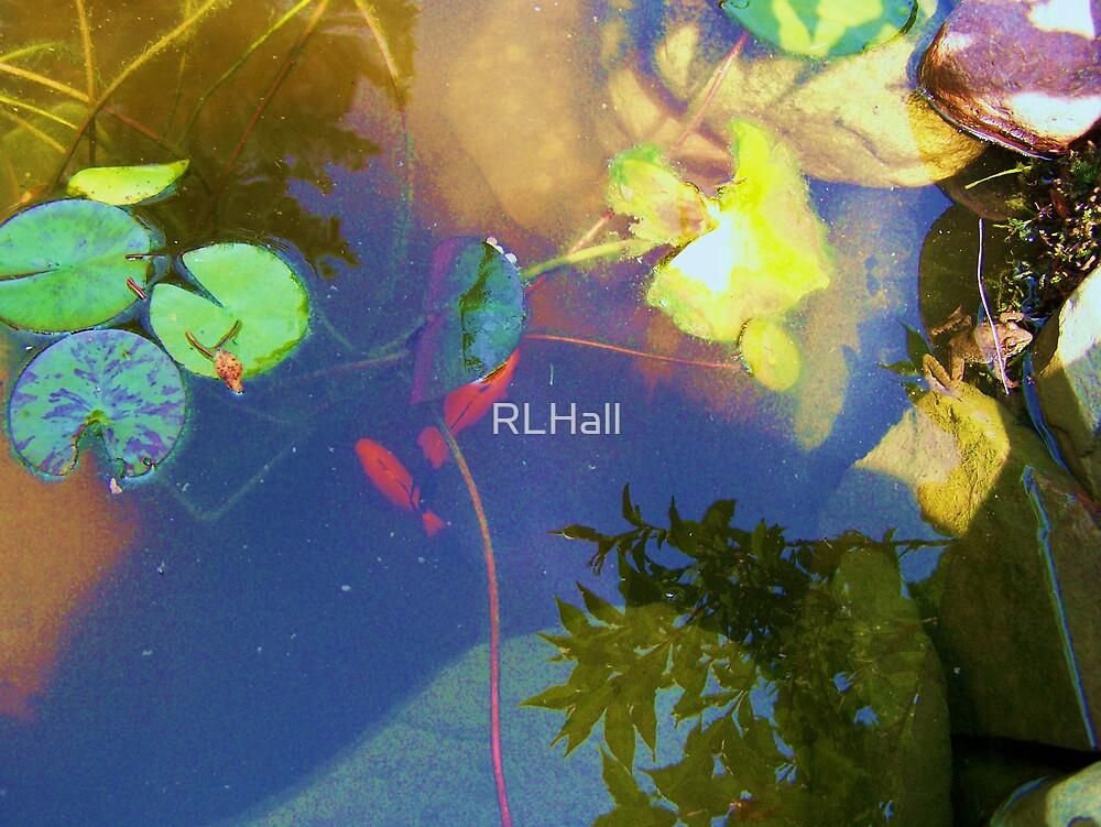 Pond Life by RLHall
