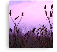 Salute the Day Canvas Print