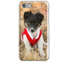 Christmas Puppy.... iPhone Case/Skin