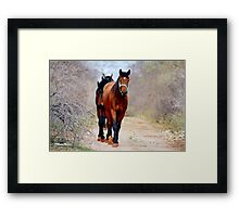 THE WAY HOME.... Framed Print