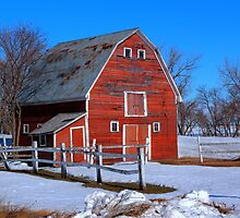 A LITTLE BIT OF COUNTRY by Larry Trupp