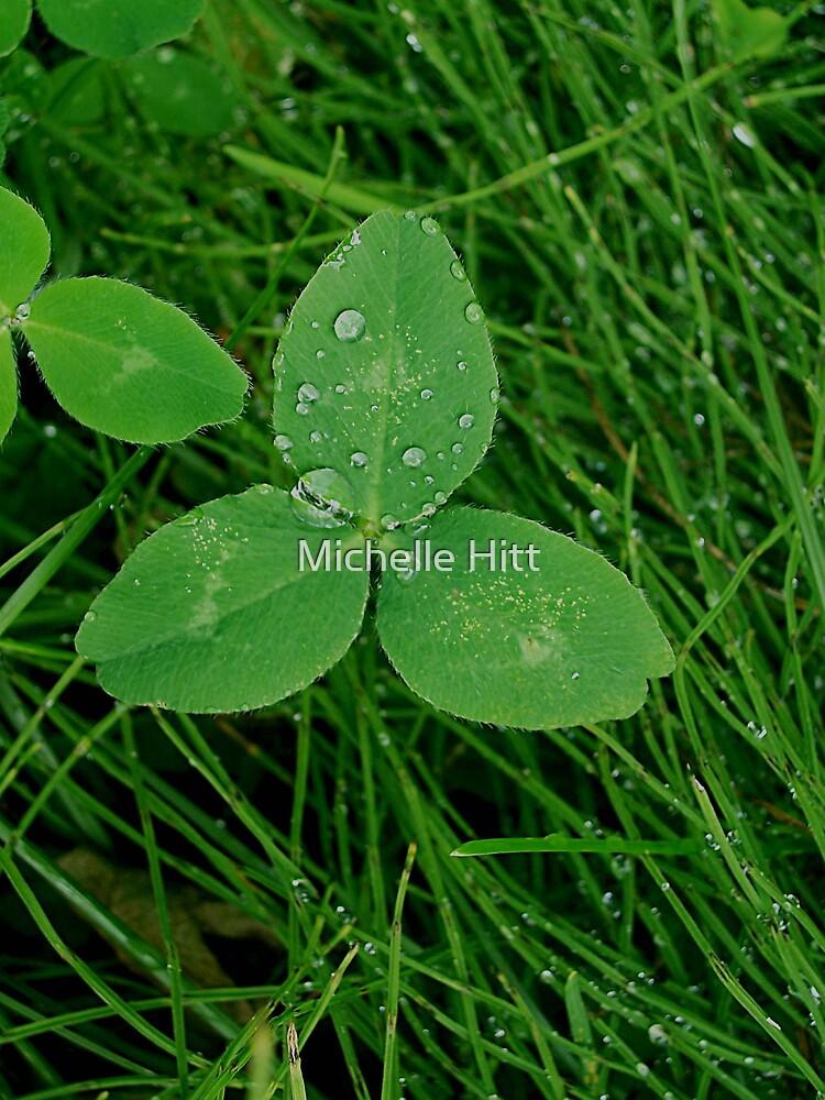 Three-leaf clover by Michelle Hitt