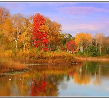 Surrounded By Fall by myworldmyeyes