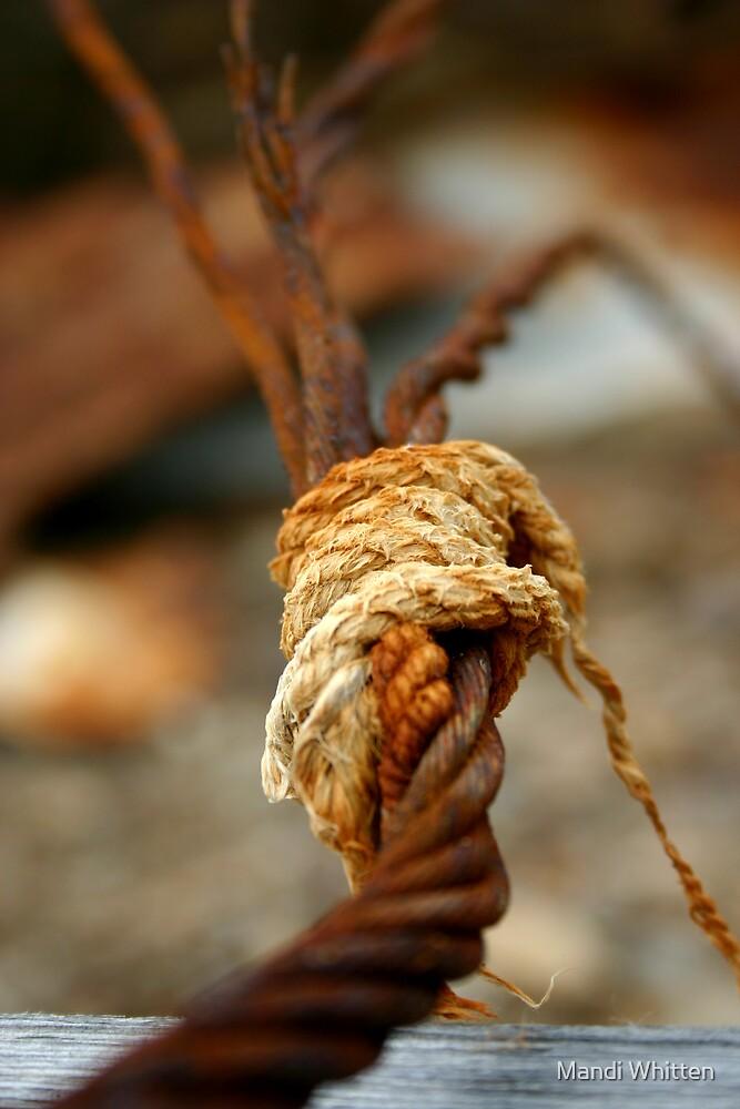hold... by Mandi Whitten