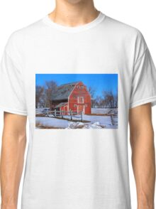 A LITTLE BIT OF COUNTRY Classic T-Shirt