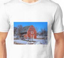 A LITTLE BIT OF COUNTRY Unisex T-Shirt