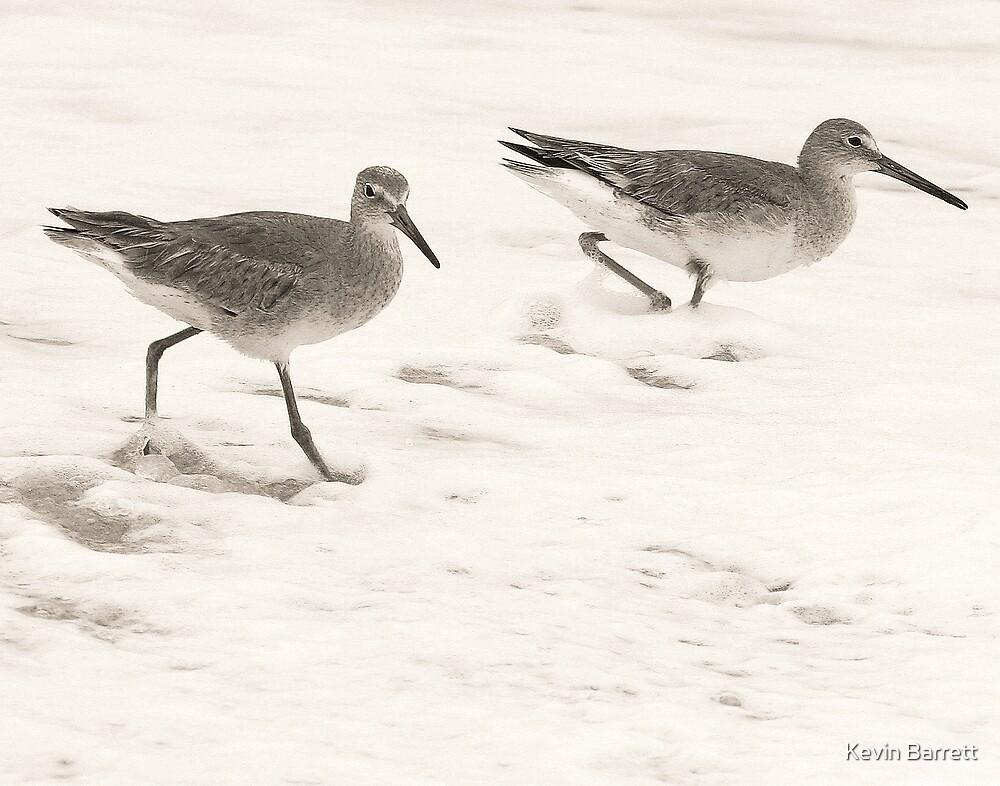 """""""Strolling In The Foam"""" by Kevin Barrett"""