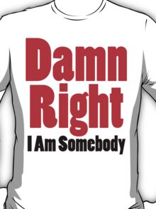 Damn Right I Am Somebody T-Shirt